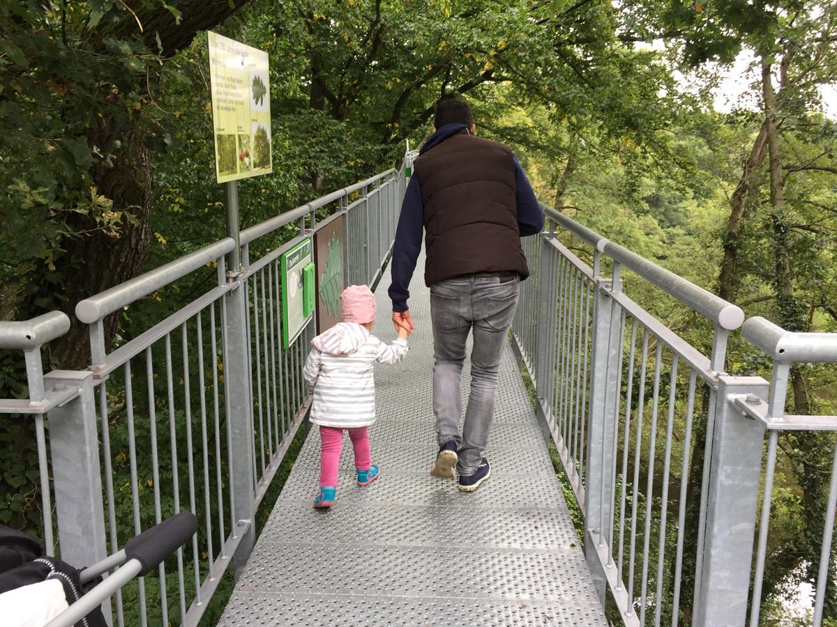 Baumwipfelpfad im Freizeitpark Schloss Beck in Bottrop-Kirchhellen