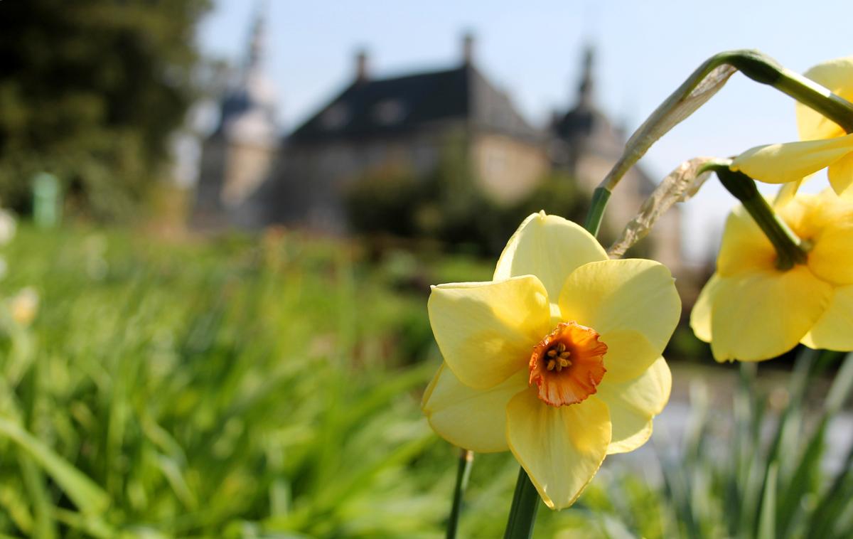 Das Schloss Lembeck in Dorsten