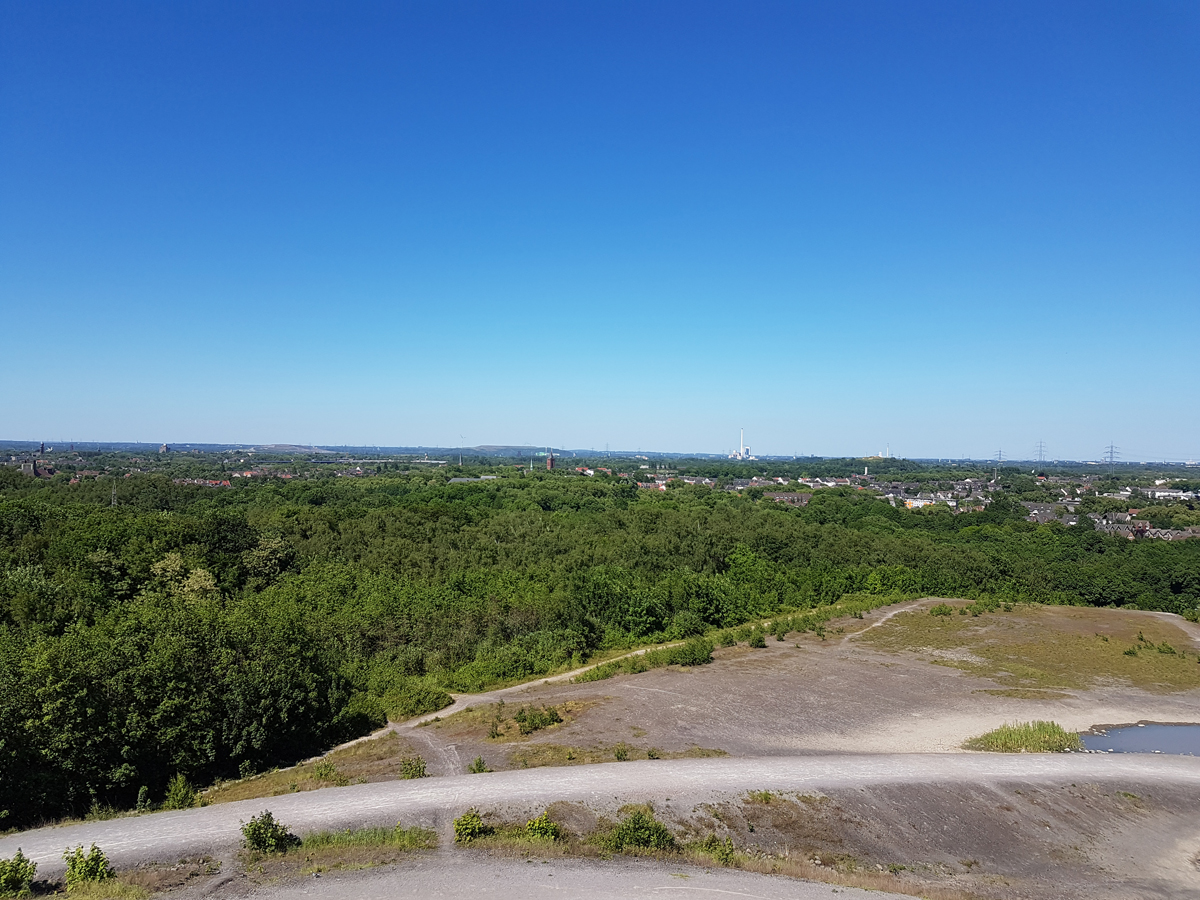 Das Foto zeigt den Ausblick aufs Ruhrgebiet von der Halde Rheinelbe in Gelsenkirchen.