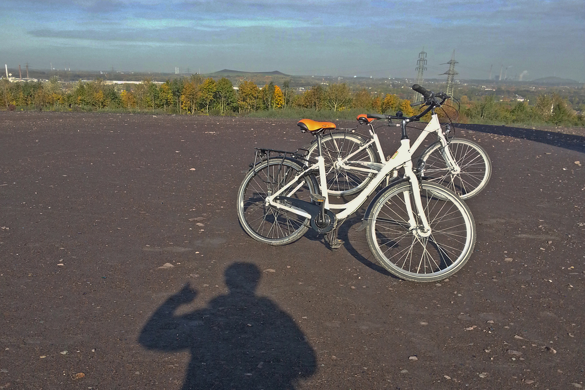 Das Foto zeihgt Fahrräder auf der Schurenbachhalde in Essen