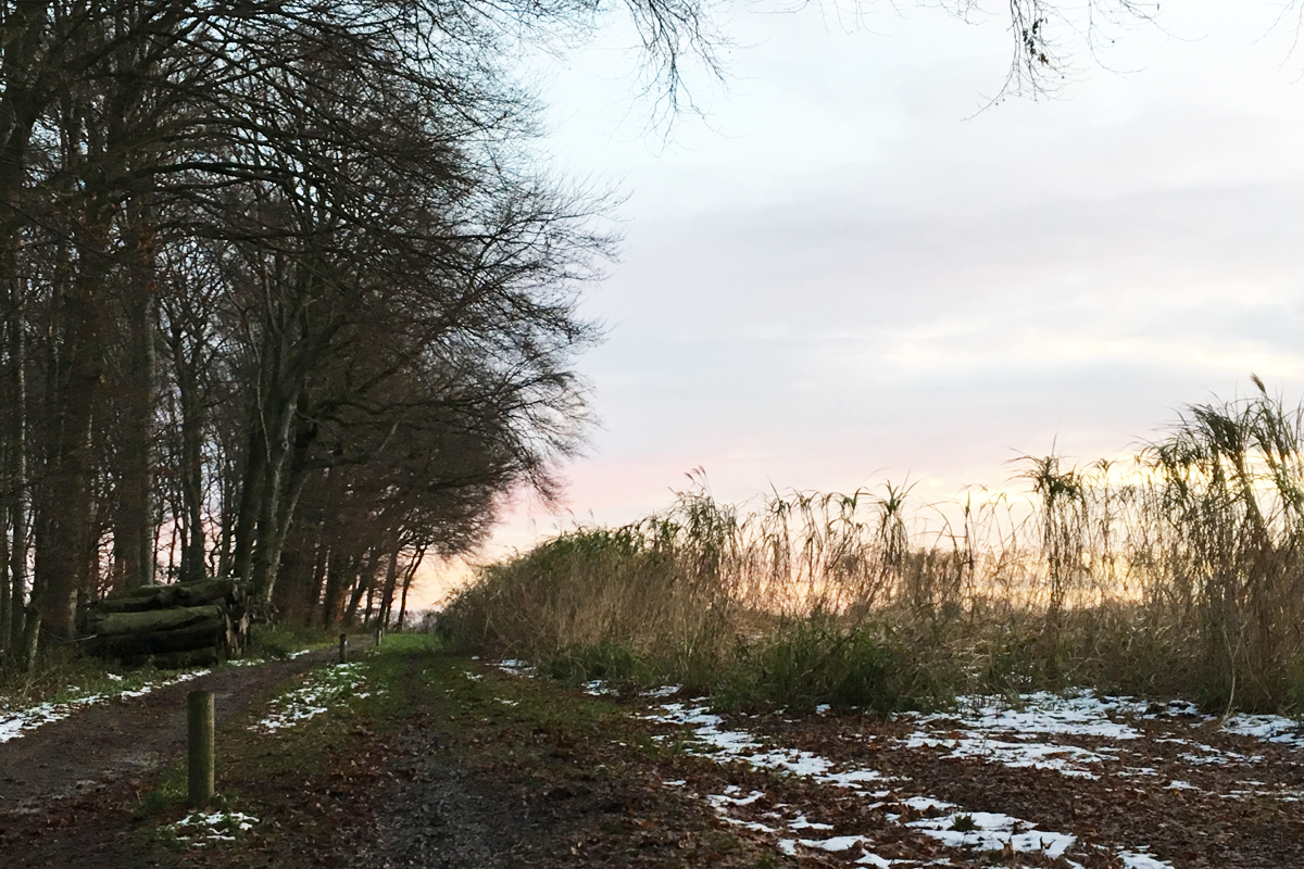 Ausblick im Gysenbergpark Herne