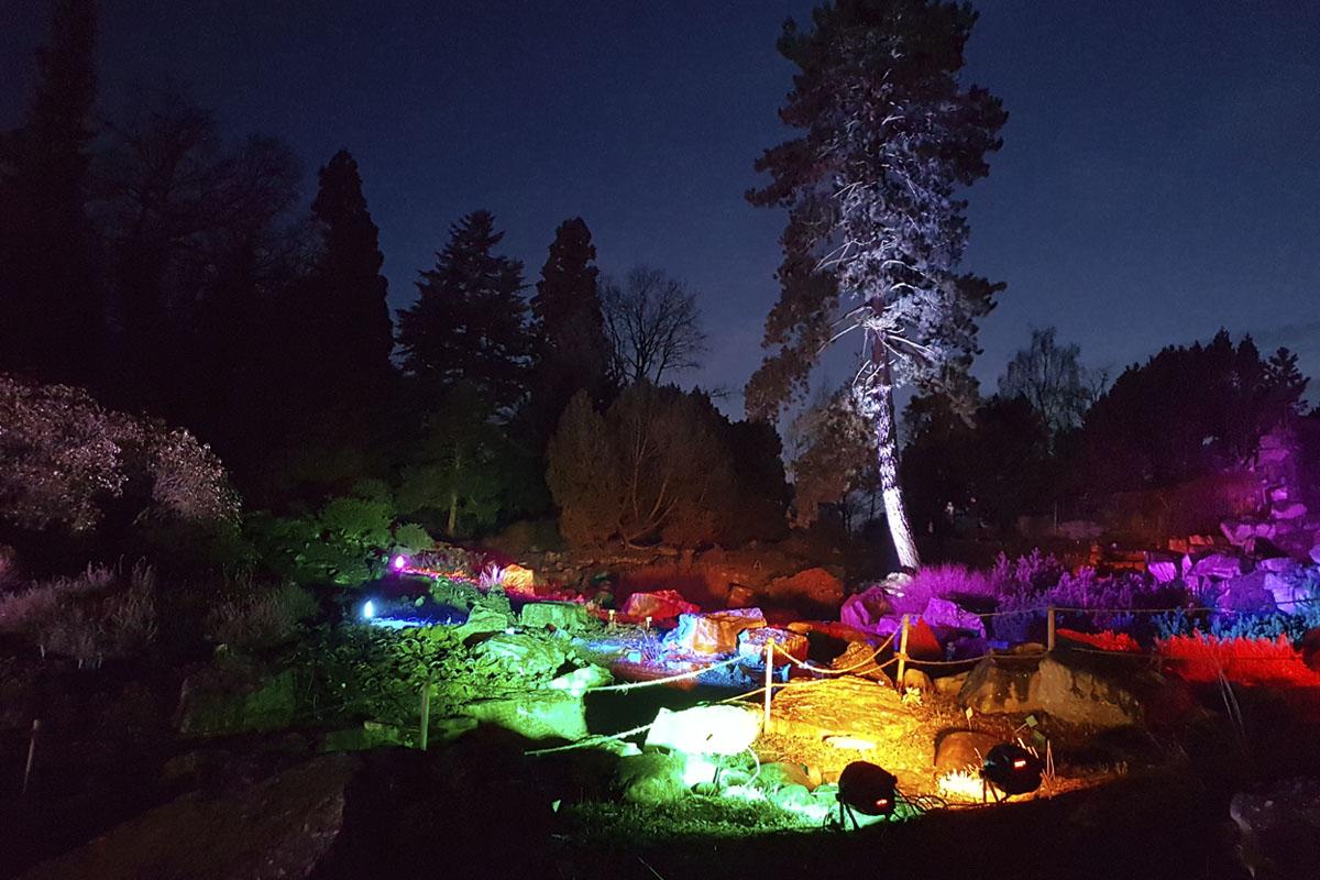 Das Foto zeigt eine beleuchtete Steinlandschaft beim Parkleuchten im Grugapark Essen
