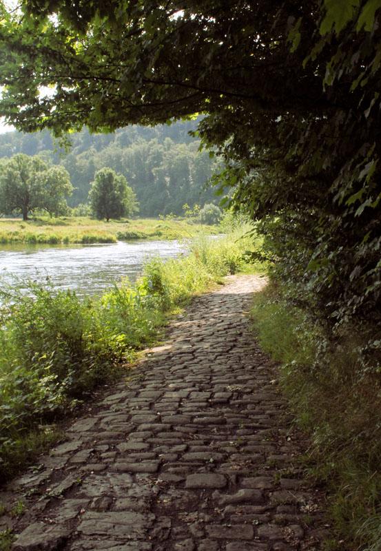 Das Foto zeigt eine Weg am Ruhrufer
