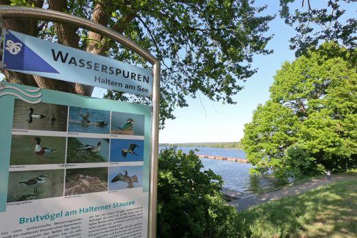 Das Foto zeigt ein Hinweisschild in Haltern am See