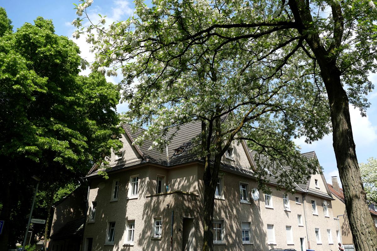 Das Foto zeigt die Arbeitersiedlung Dinslaken-Lohberg