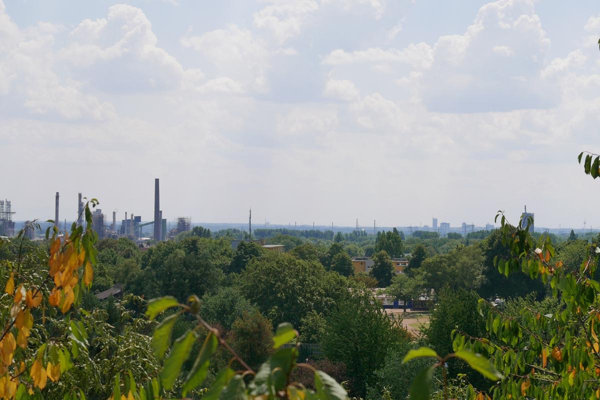 Das Bild zeigt die Aussicht von der Halde Rungenberg.