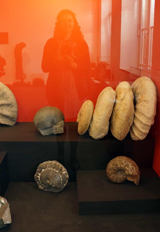 Das Bild zeigt Ausstellungsstücke im Mineralienmuseum in Essen