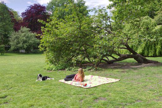 Das Foto zeigt Bloggerin Rebecca nebst Hund Fino bei einem Picknick im Kaisergarten Oberhausen, der sich als Ausflugsziel bei einem Kurzurlaub mit Hund im Ruhrgebiet bestens eignet