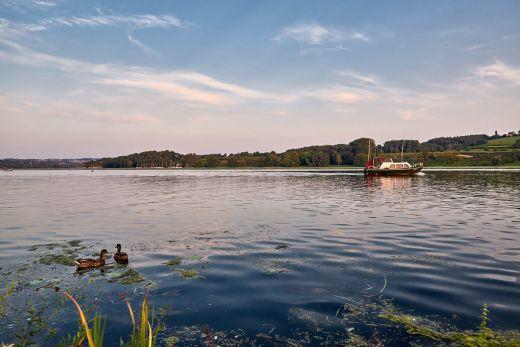 Das Foto zeigt zwei Enten und ein Boot auf dem Baldeneysee in Essen