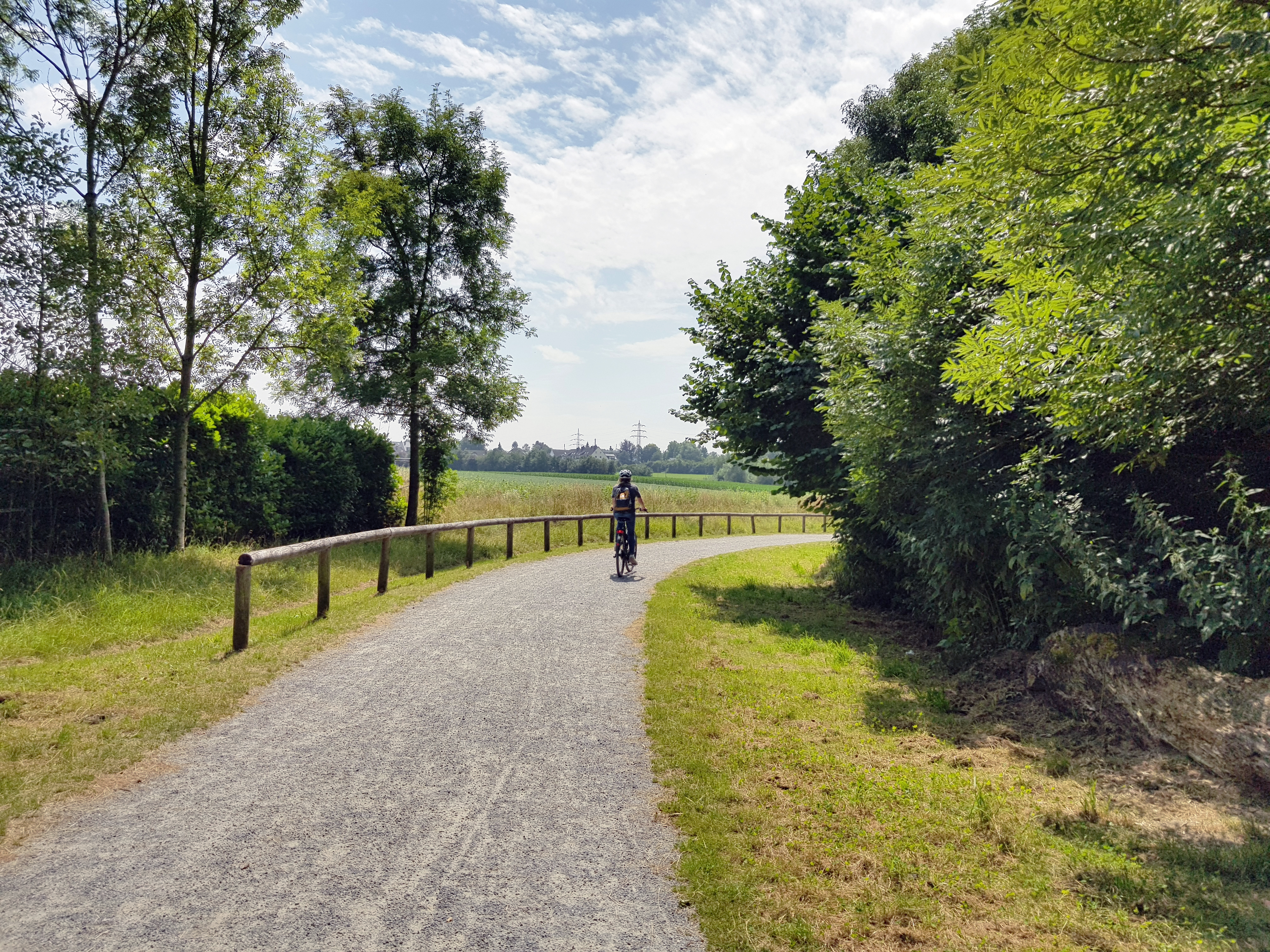 Das Bild zeigt einen Radler inmitten von grünen Wiesen im Hexbachtal in Mülheim an der Ruhr