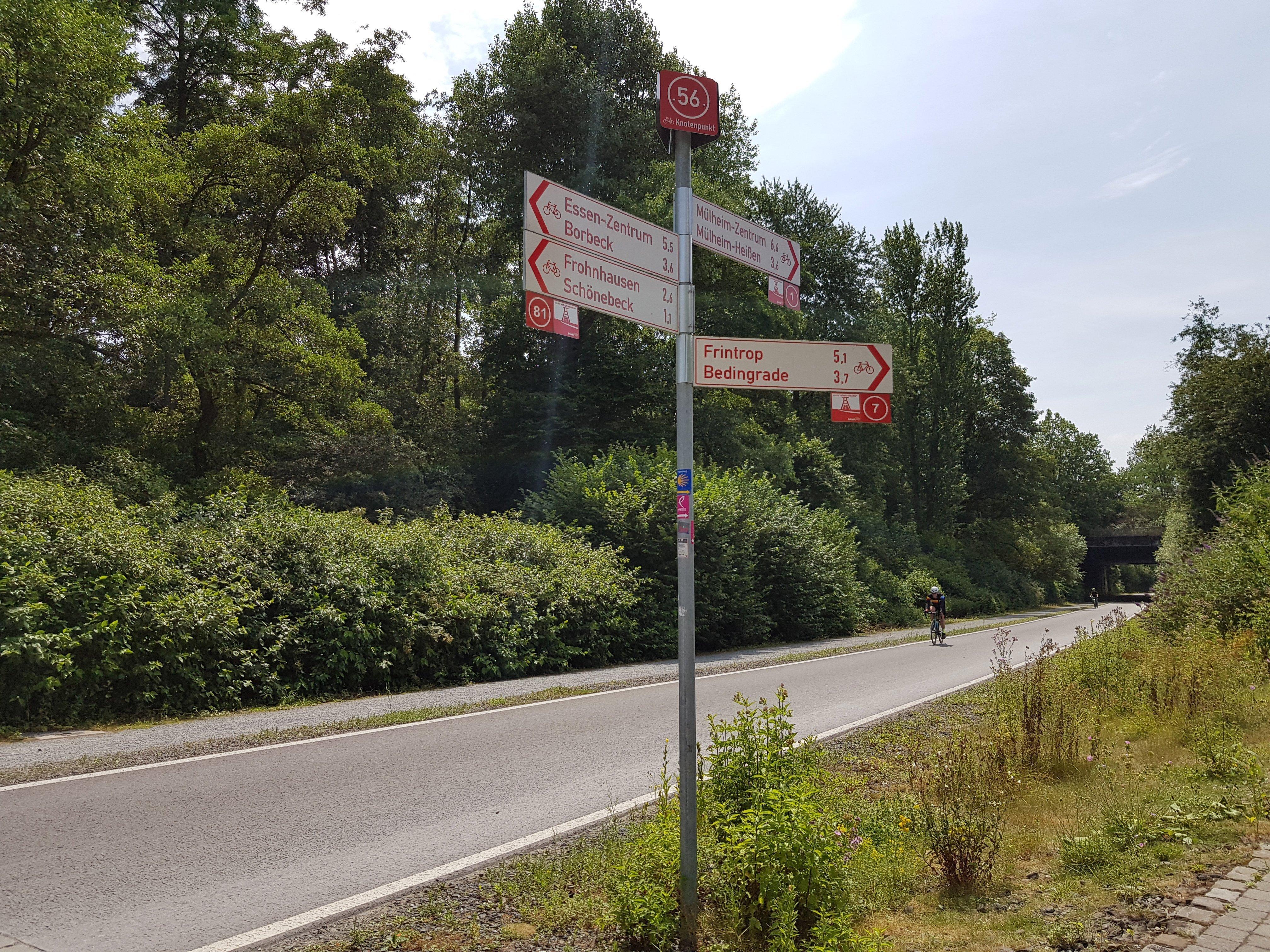 Das Bild zeigt einen Radfahrer auf dem RS1 in Mülheim an der ruhr