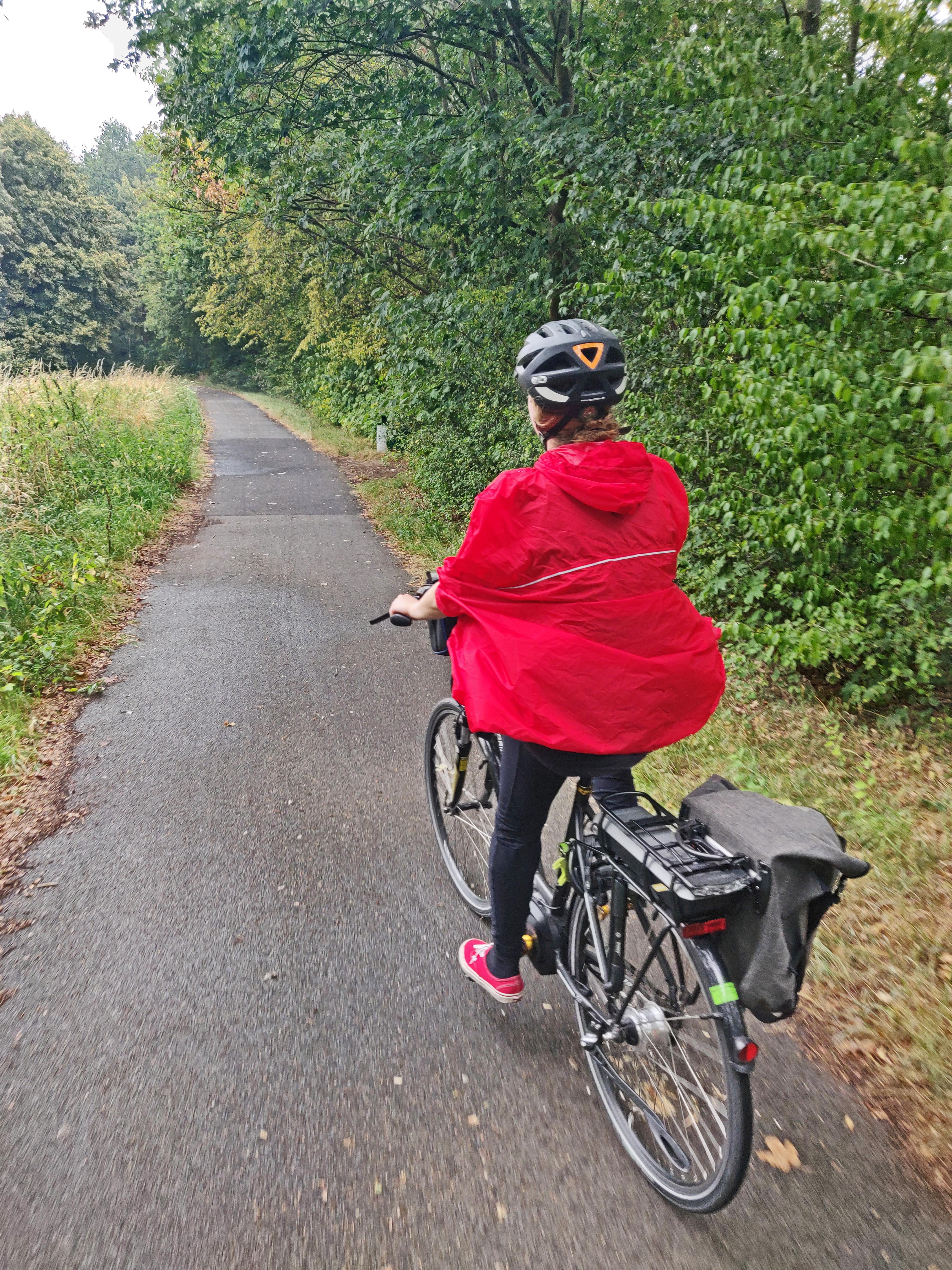 Das Bild zeigt ein Rad auf dem RuhrtalRadweg in Witten