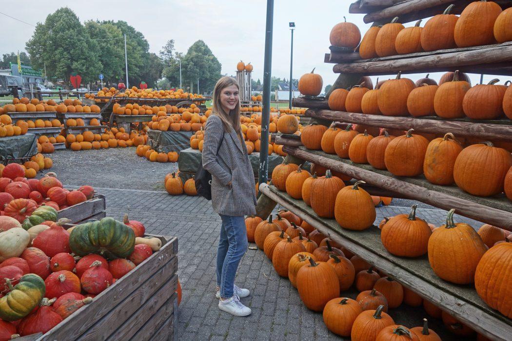 Das Foto zeigt Alex auf dem Buchholzhof