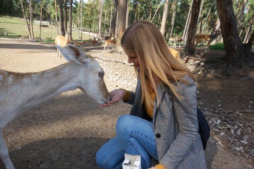 Das Foto zeigt Alex beim Füttern der Tiere im Wildpark Granat