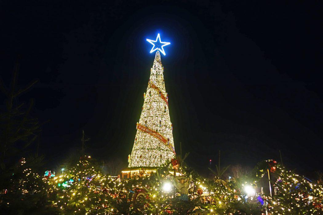 Das Bild zeigt den Weihnachtsbaum auf Cranger Weihnachtszauber