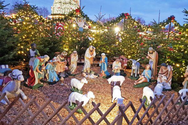 Das Bild zeigt eine Krippe auf dem Cranger Weihnachtszauber