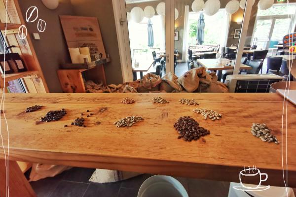Das BIld zeigt verschiedene Kaffeebohnen in der Kaffeerösterei Oranien-Nassau