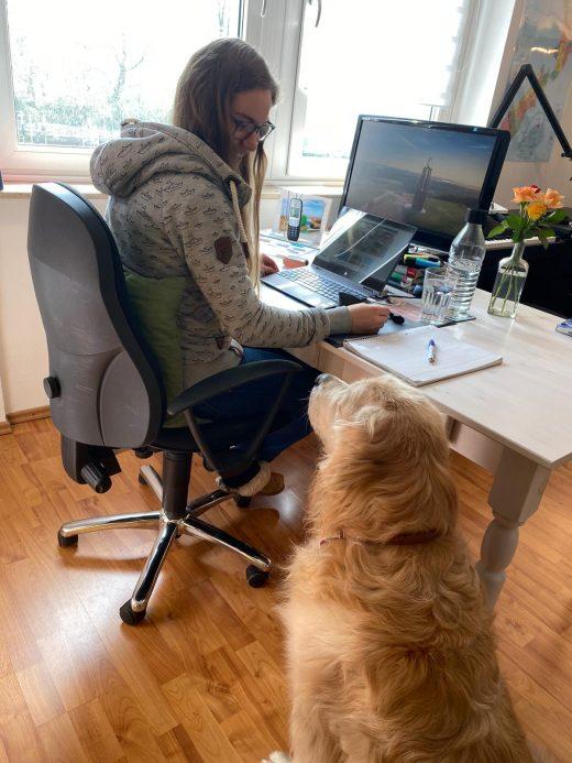 Das Foto zeigt Christin und Hund Amigo bei der Arbeit