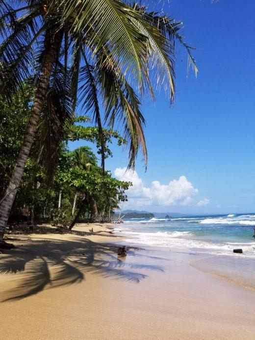 Das Foto zeigt einen Strand in Cocta Rica