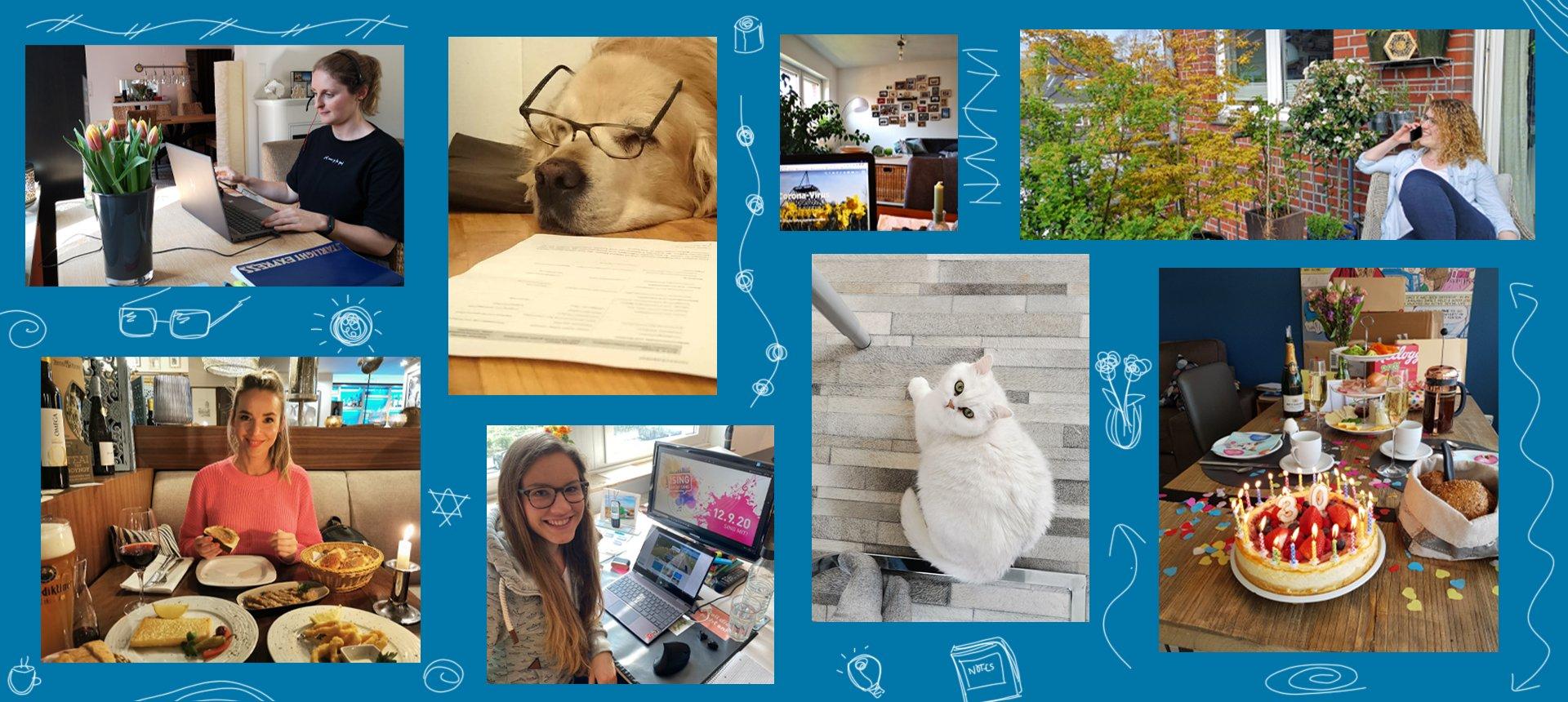 Das Foto zeigt eine Collage zum Blogartikel