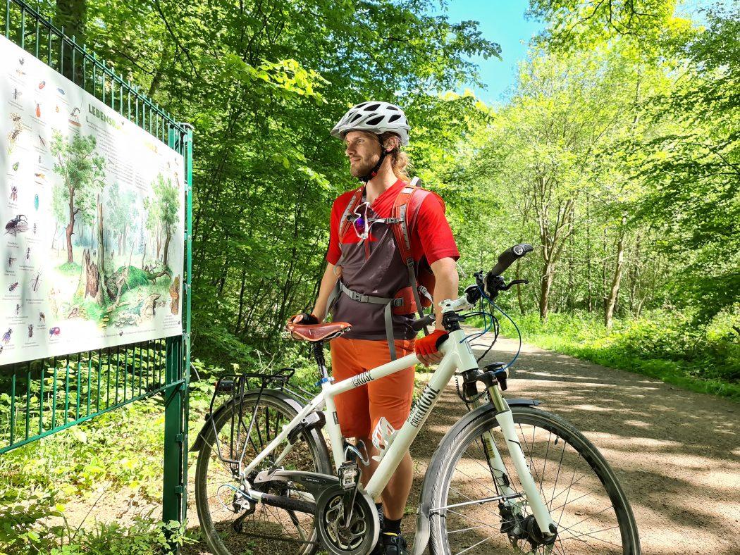 Das Bild zeigt das Waldlehrpfad mit vielen Infotafeln