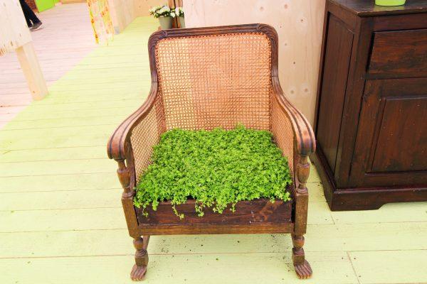Das Bild zeigt einen begrünten Stuhl