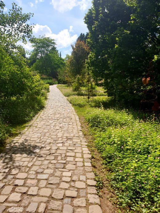 Das Bild zeigt einen Weg im Rombergpark