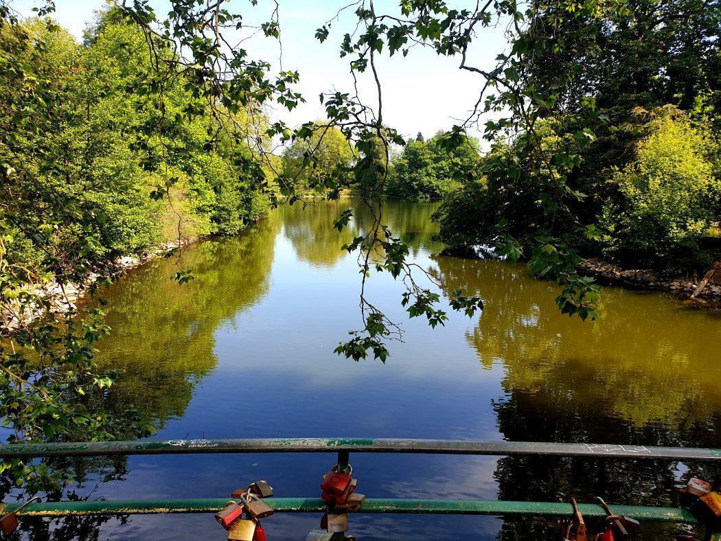 Das Bild zeigt den großen Teich im Rombergpark Dortmund