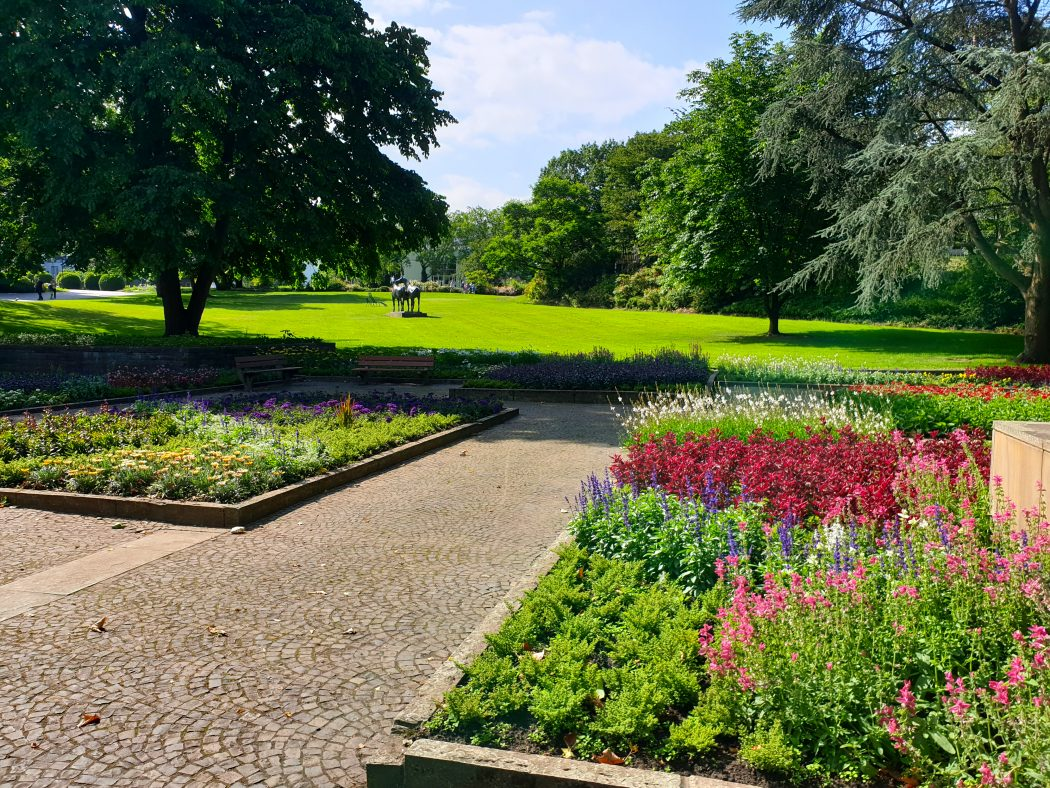 Das Bild zeigt Blumen im Grugapark