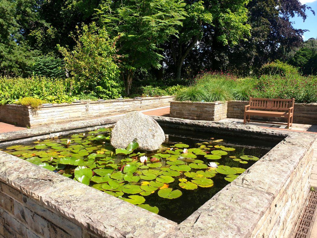 Das Bild zeigt den Garten der Sinne