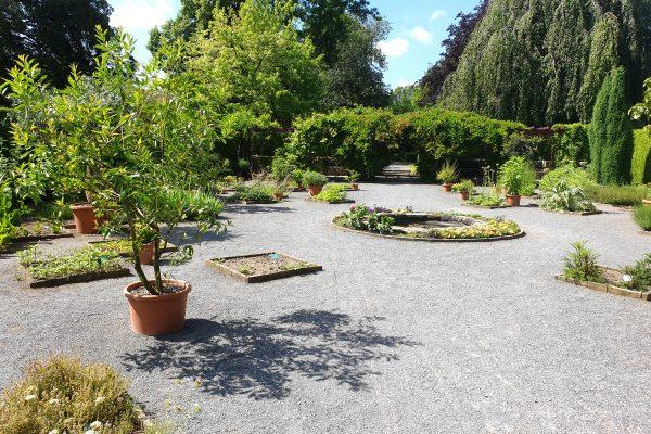 Das Bild zeigt den Heilkräutergarten