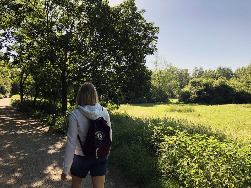 Das Bild zeigt den Wanderweg in Herne.