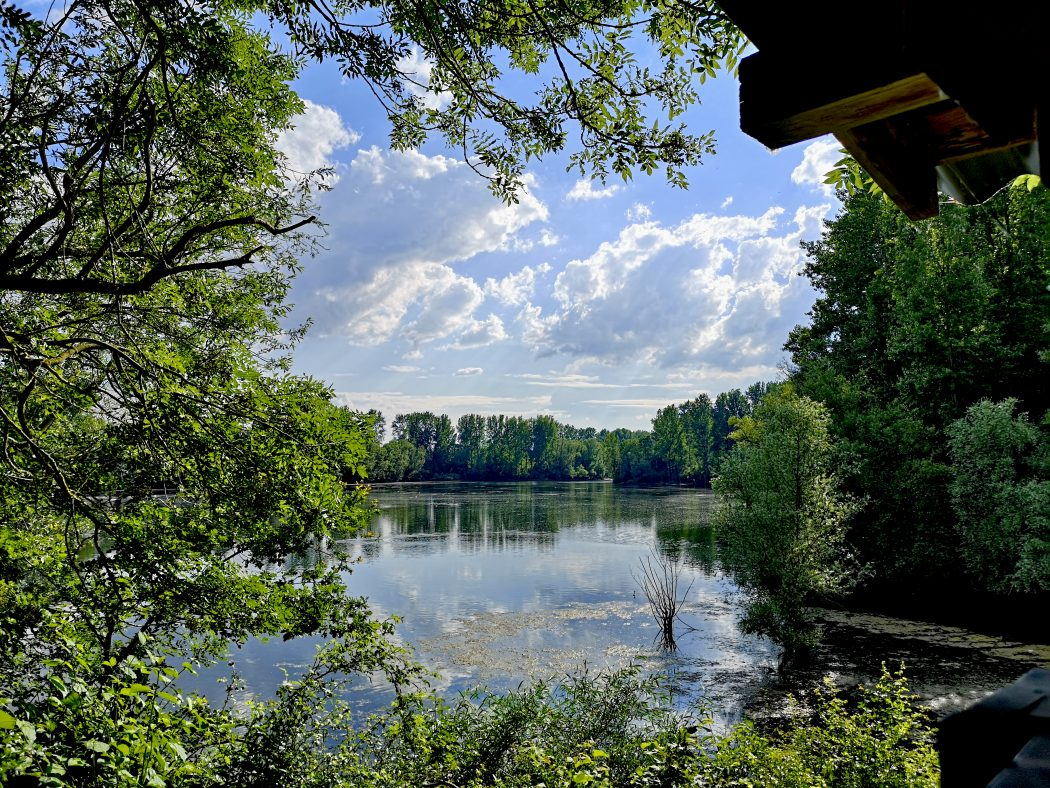 Das Bild zeigt einen See.