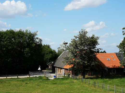 Auf dem Bild sieht man einen Bauernhof und ein Storchennest