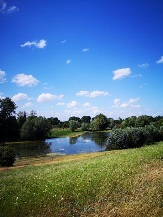 Auf dem Bild sieht man einen See und eine grüne Wiese.