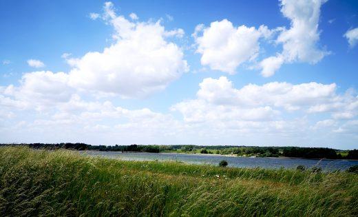 Das Bild zeigt den Rhein und Wiesen.
