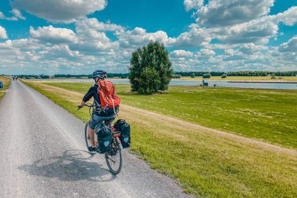 Das Bild zeigt einen Radfahrer an den großen Au-Wiesen des Rheins