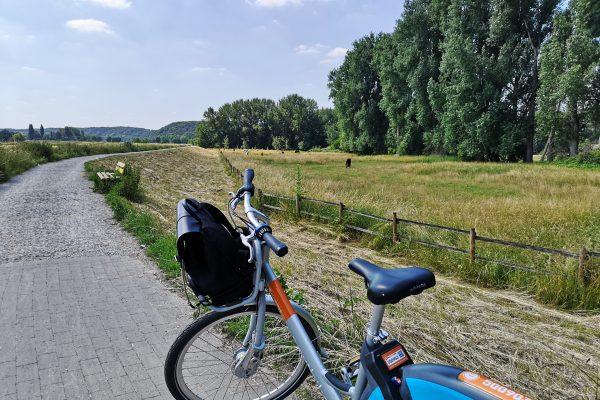 Das Foto zeigt ein Metropolrad auf dem RuhrtalRadweg in Mülheimi