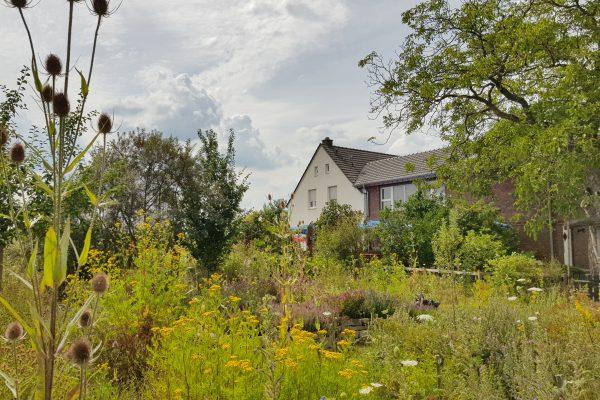 Das Foto zeigt den idyllischen Garten des Hof Emscher-Mündung