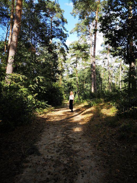 Das Bild zeigt eine Person im Wald