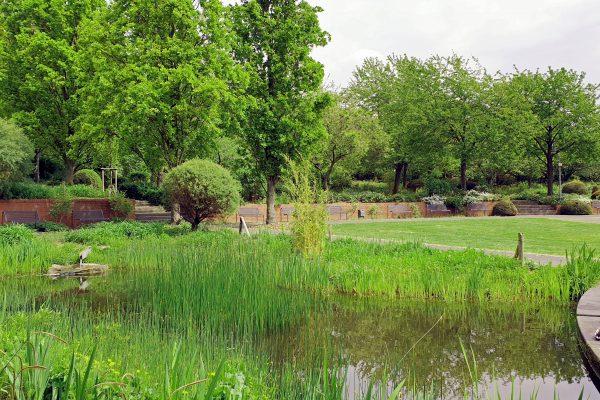 Das Bild zeigt einen kleinen See in einem Park