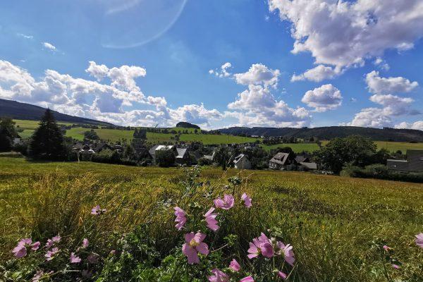 Das Foto zeigt die schöne Landschaft in Winterberg