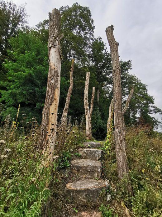 """Das Foto zeigt den """"Natur-Erlebnis-Raum"""" in Arnsberg"""
