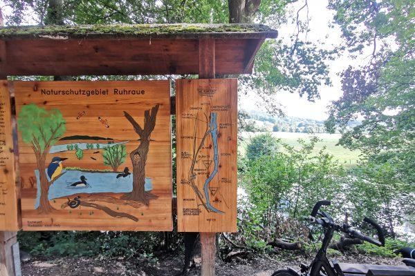 Das Foto zeigt das Naturschutzgebiet Ruhraue in Witten