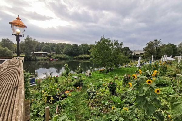 Das Foto zeigt den gemütlichen Garten des Picassos in Witten