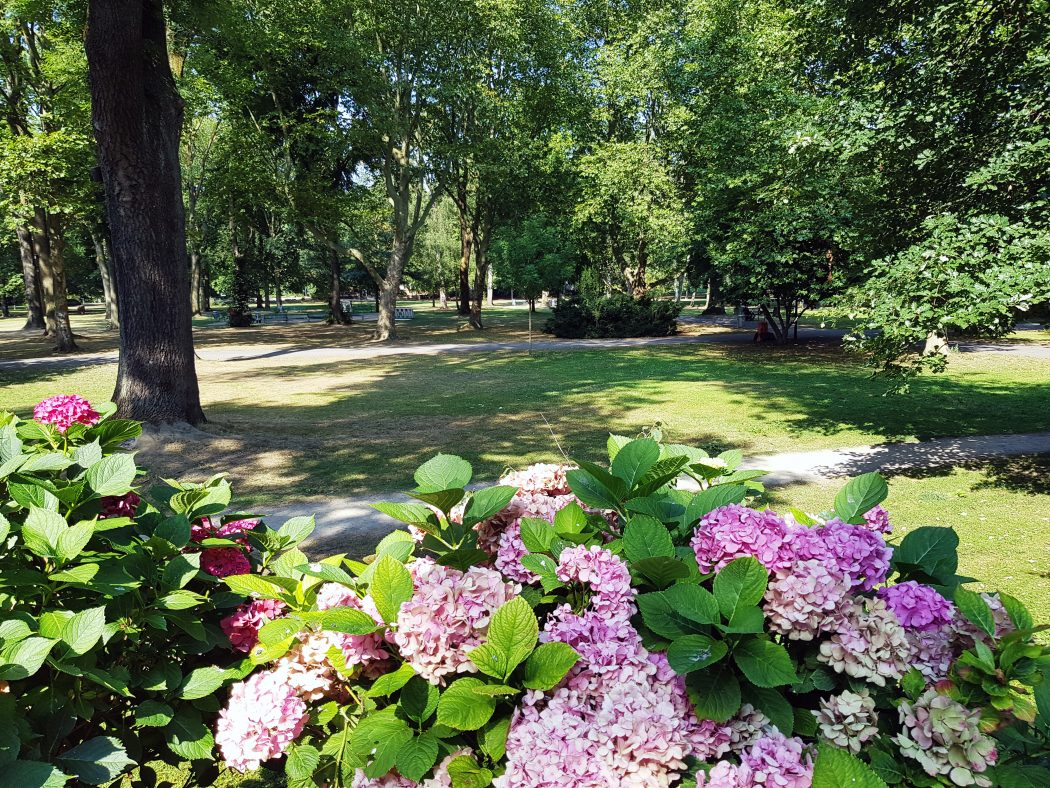 Das Foto zeigt den Westpark in Dortmunder Kreuzviertel