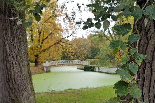 Das Foto zeigt die Brücke auf der Garteninsel des Schloss Schwansbells in Lünen