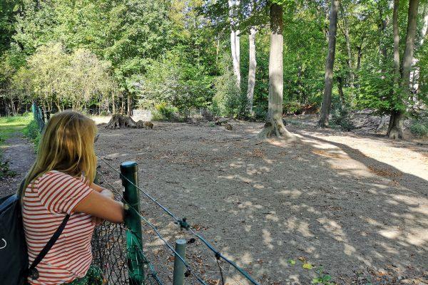 Das Foto zeigt Heike mit Blick auf die Wildschweine im Schlosspark Weitmar