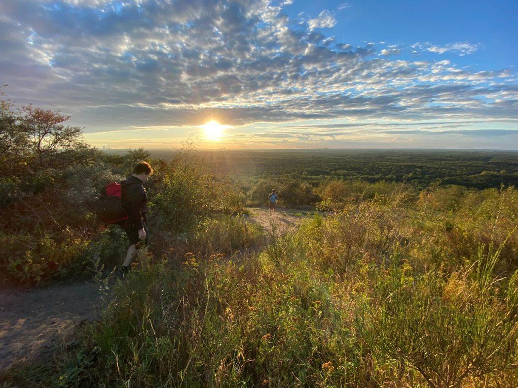 Das Bild zeigt den Blick auf den Naturpark Hohe Mark