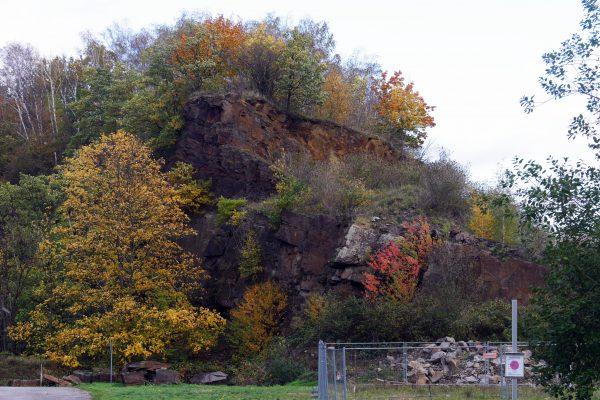 Das Foto zeigt das Naturschutzgebiet Steinbruch Rauen